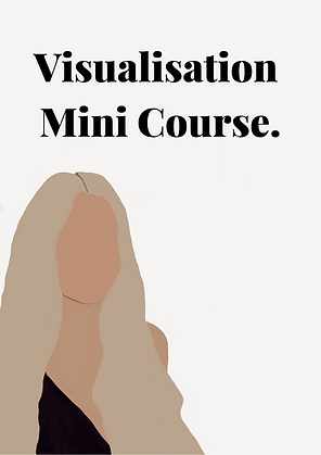 visualisation mini course..png