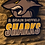 Thumbnail: imake BBL Sheffield Sharks Wooden Wall Badge