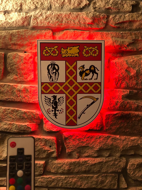 Handmade 1953 Stoke City Wall Light