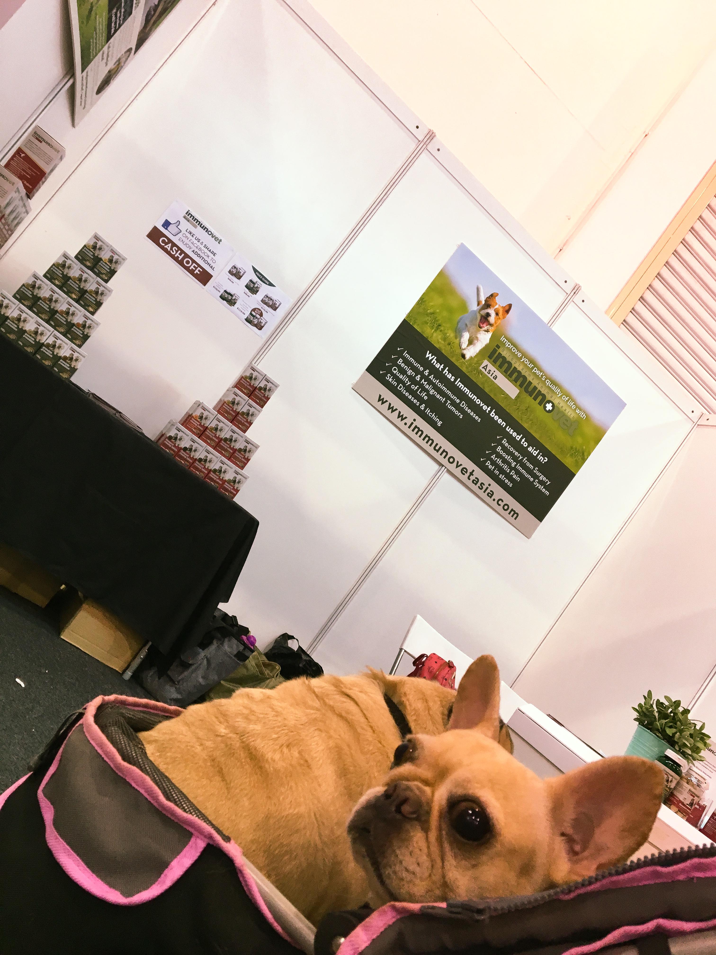 Pet EXPO 2016 - Singapore 16