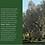 Thumbnail: Grinolio Alivara Olivenöl
