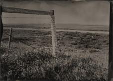 Cemetery Fence