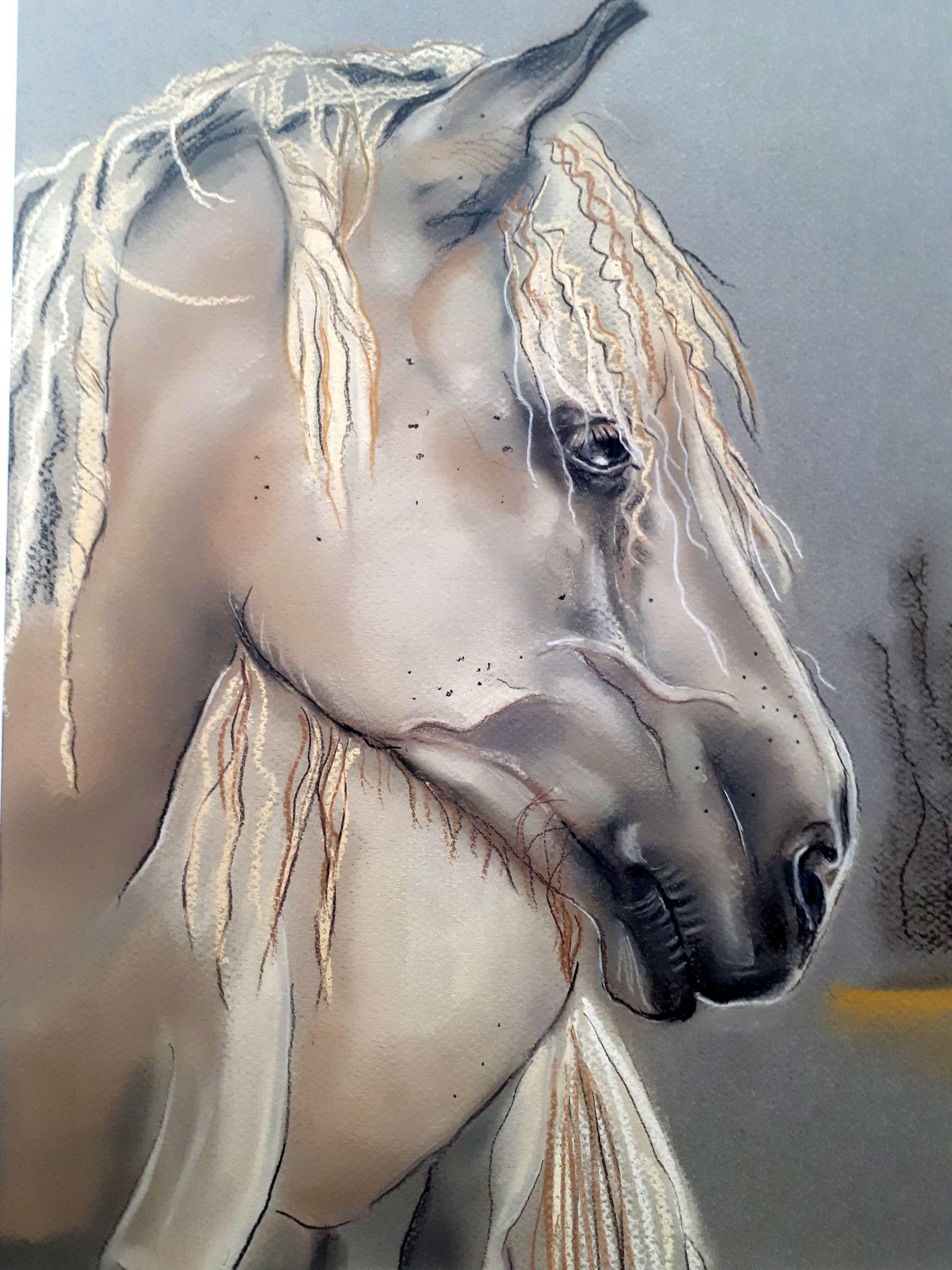 RIta_HorsePalomino