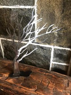 Windwept Tree