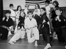AMerican Karate Studios .jpg