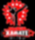 american karate studios logo 1.png