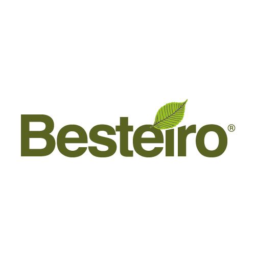 BESTEIRO