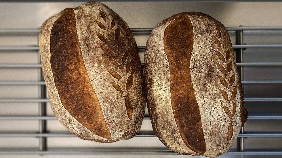 Bread_Photo_Blur.jpg