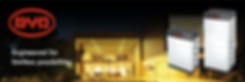 BYD Banner.png