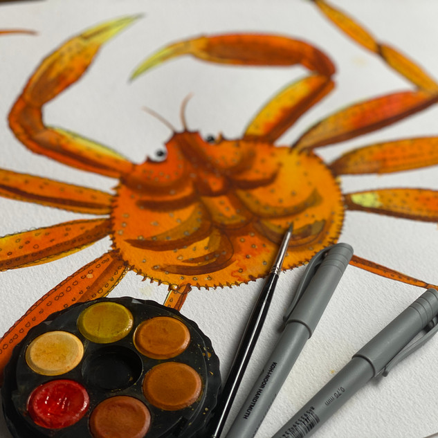 Watercolour and Fine-liner Pen