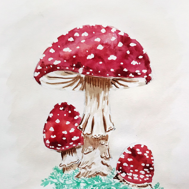 Toadstools in Watercolour and Masking Fluid