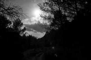 Path, Guhyaloka, Spain. 2009