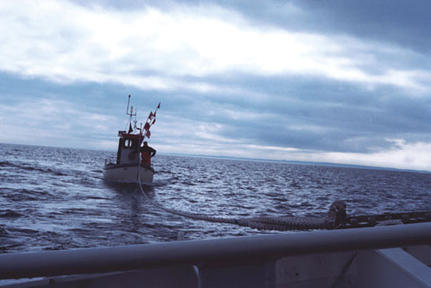 Pulling the 'Barbara' back to the safe harbour of Grömitz, Germany.
