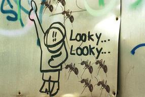 Graffiti, Berlin, Germany.