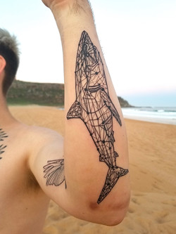 Shark geometric Tattoo