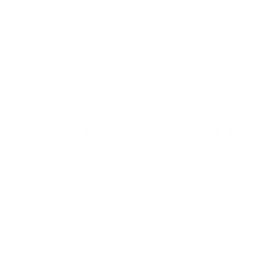 Quandel Logo