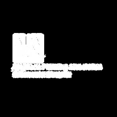 APA Minnesota Logo