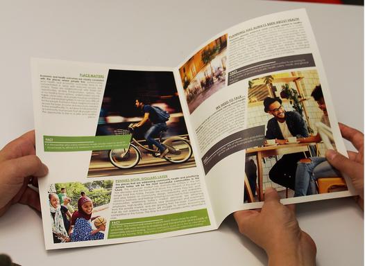 APA Brochure being read.png