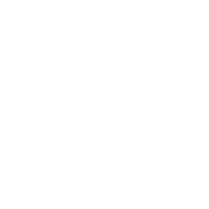 Rabbit Relevance Logo