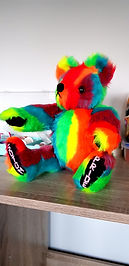 pride bear.jpg