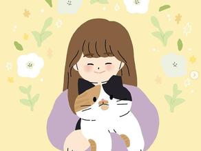 韓国の作家さんのインタビュー#2猫喫茶店様