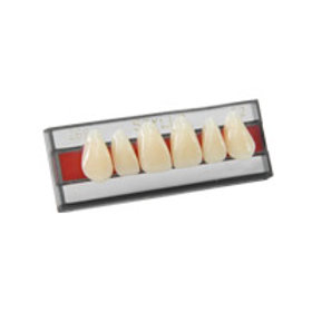Dente 2 Camadas - Styllo
