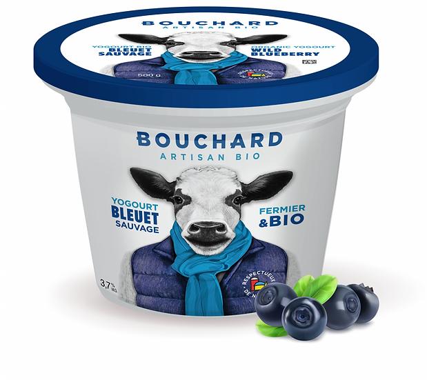 Yogourt bleuet