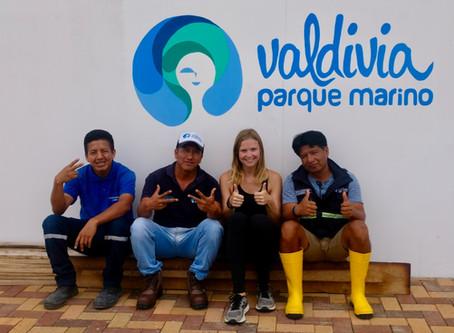 Volunteering at Parque Marino Valdivia near Ayampe, Olón and Montañita.