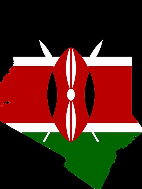 20/20 Vision Kenya Mkutano