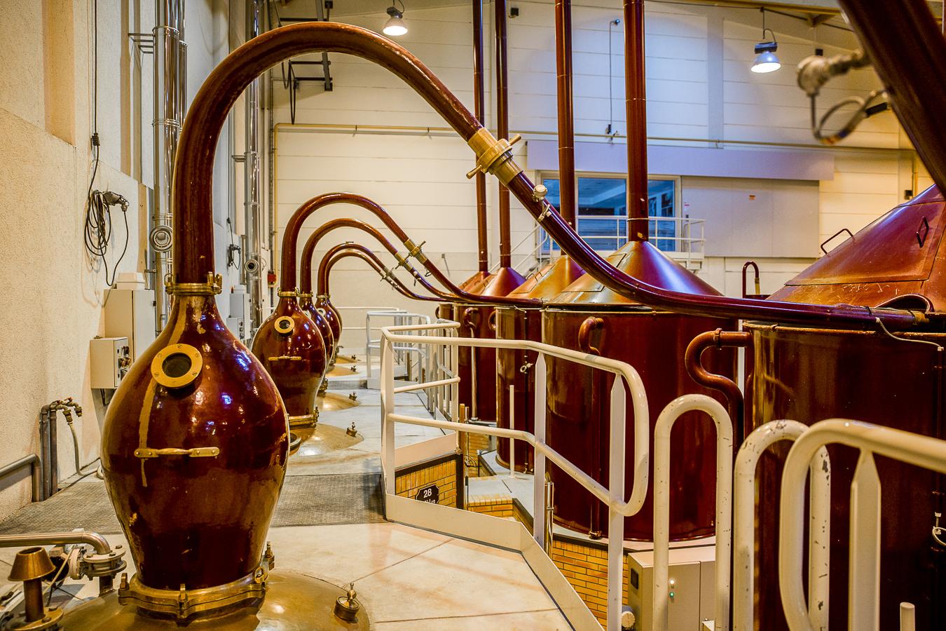 Martell_Distillerie_Janv2016_Cognac_Jerusalmi109