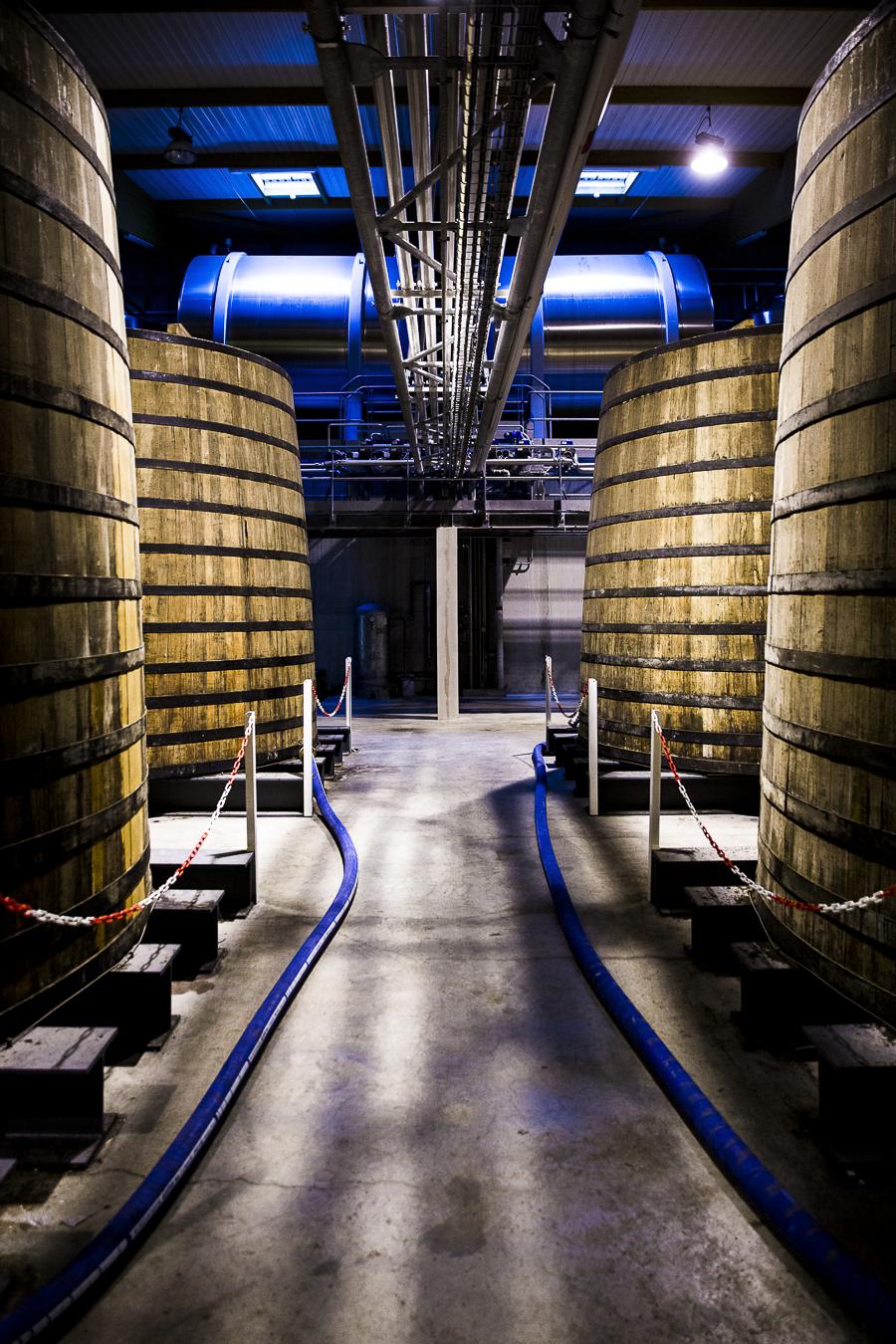 Martell_Distillerie_Janv2016_Cognac_Jerusalmi503