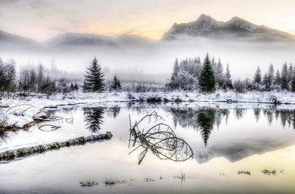 Bull River Reflection