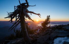 Scotchman's Peak Sunset Snag