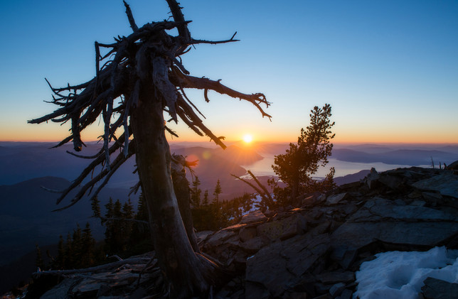 Scotchman's Peak Sunset Snag