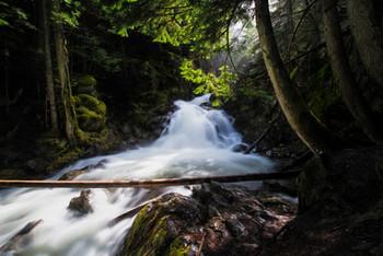 Lower Snow Falls