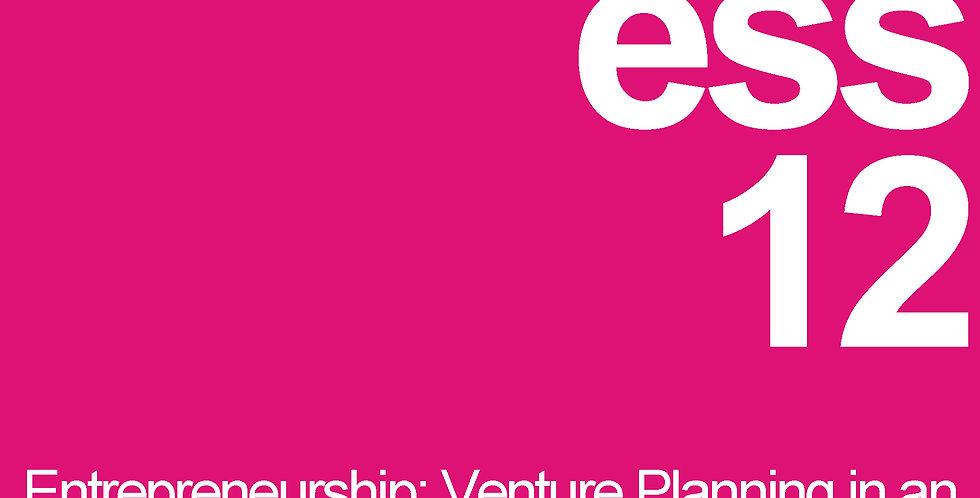 Entrepreneurship: Venture Planning in an Electronic Age