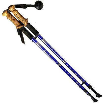 R18143-PRO Палки для скандинавской ходьбы