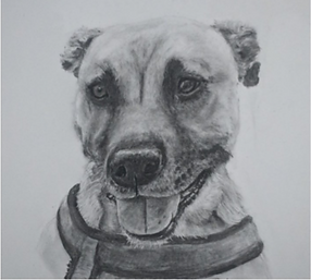 Charcoal drawing by Steve.png