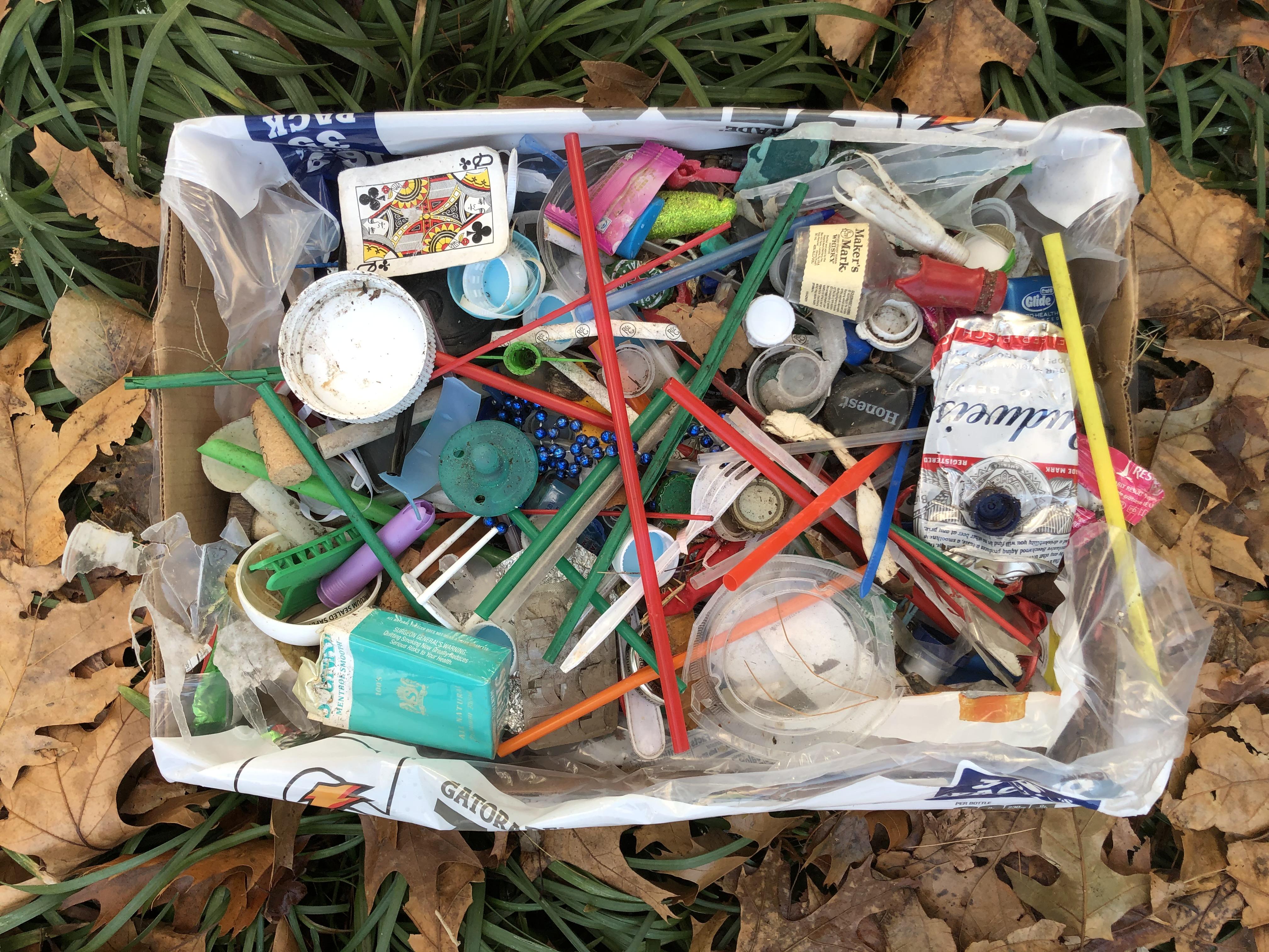 A Litter Box