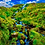 Thumbnail: Isle of Skye 1