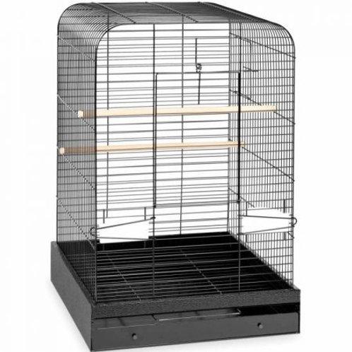 Prevue Madison Bird Cage - Black