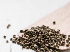Benefits of adding Hemp Seeds to your bird's diet