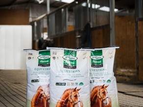 Why Hemp is the perfect additive for your horses diet?
