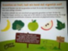 groente en fruit voor de hond