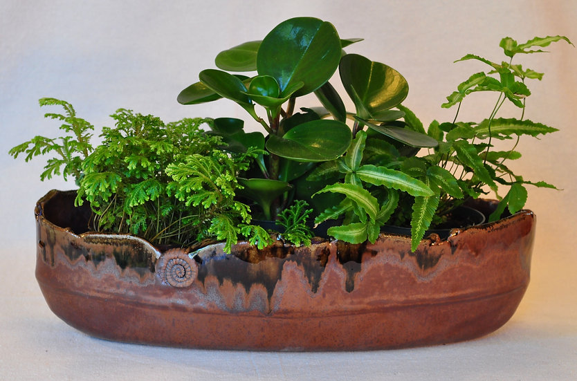 Mahogany Planter - large - SOLD