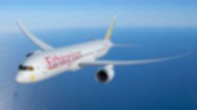 ETH-787-9-in-flight-view-6-MR.jpg