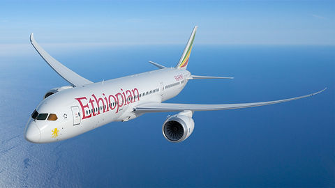 ETH-787-9-in-flight-view-6-MR.jpg