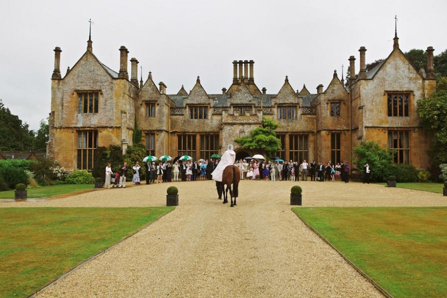wedding venues devon dillington horse.jpg