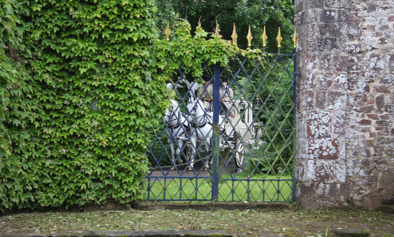 wedding venues devon bickleigh castle carriage.jpg