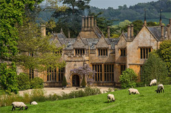 wedding venues devon dillington sheep.jpg